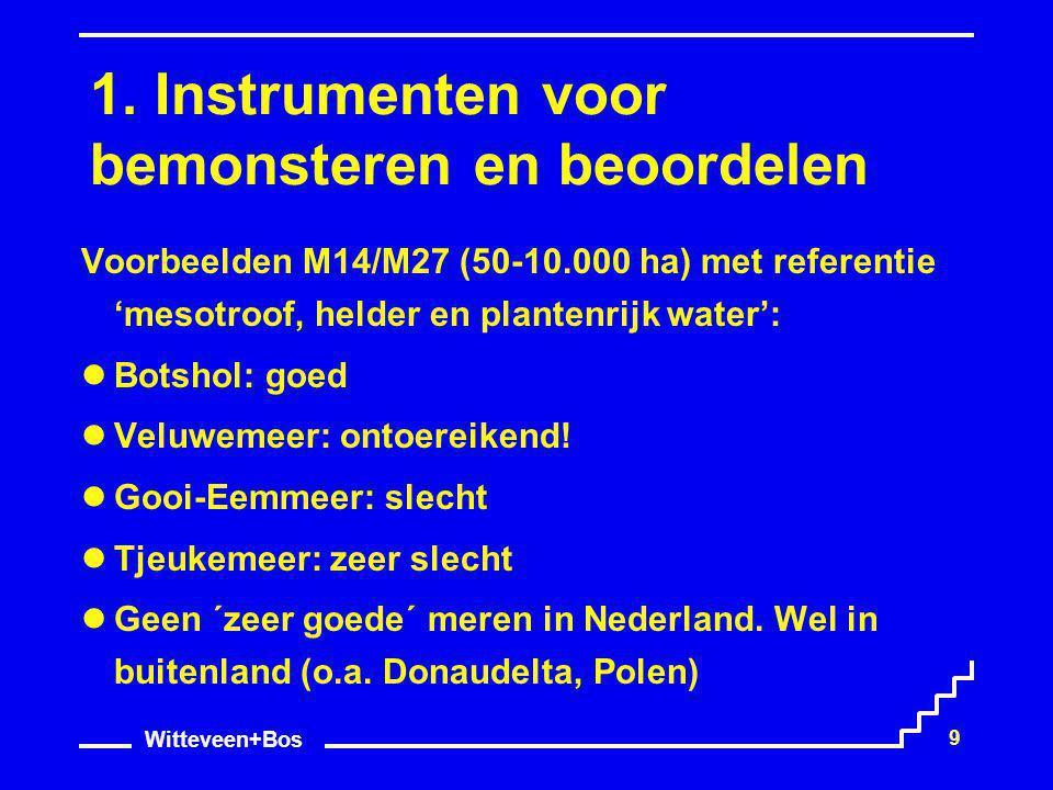 Witteveen+Bos 9 1. Instrumenten voor bemonsteren en beoordelen Voorbeelden M14/M27 (50-10.000 ha) met referentie 'mesotroof, helder en plantenrijk wat