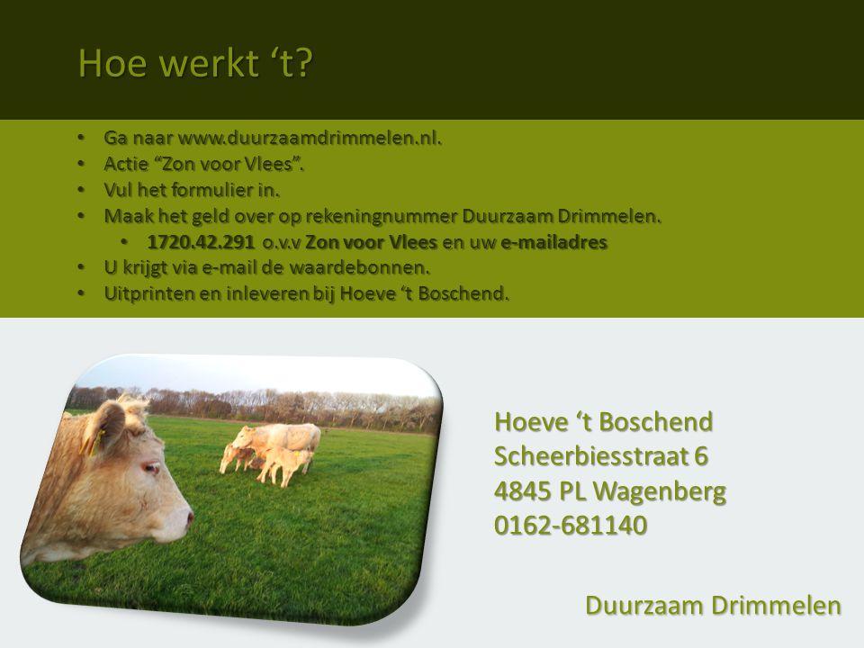 Duurzaam Drimmelen Ga naar www.duurzaamdrimmelen.nl.