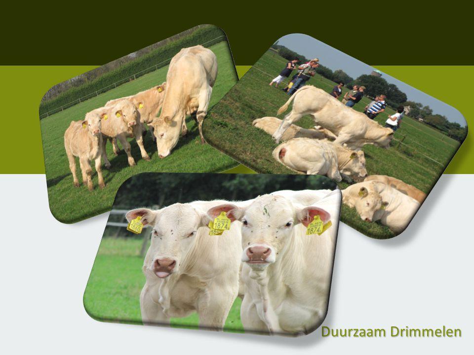 Inleg: €50,-- 2012/13 Vleespakket twv.€20,-- 2014 Vleespakket twv.