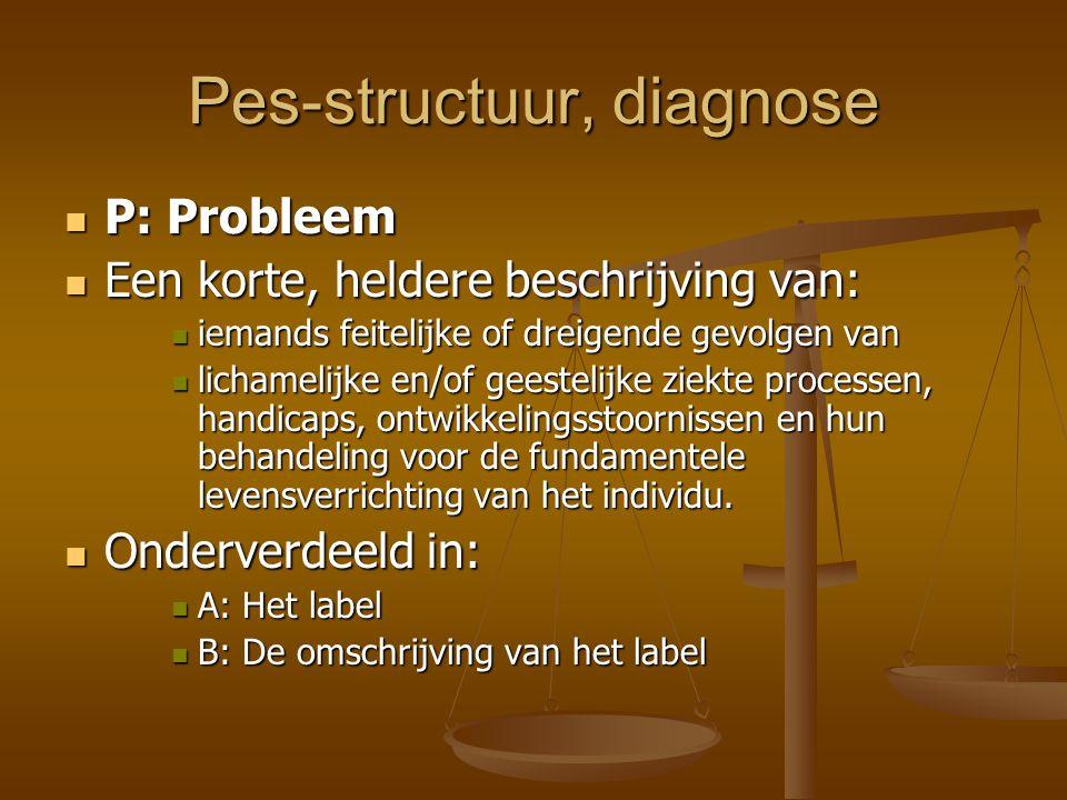 Pes-structuur, diagnose P: Probleem P: Probleem Een korte, heldere beschrijving van: Een korte, heldere beschrijving van: iemands feitelijke of dreige