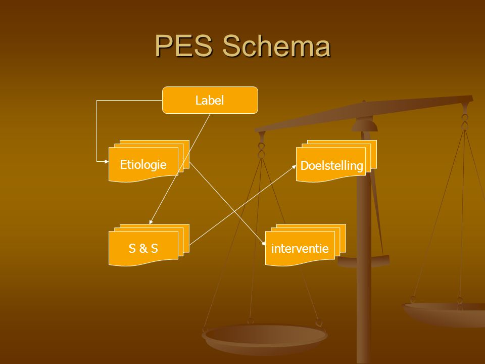 PES Schema Label Etiologie interventieS & S Doelstelling