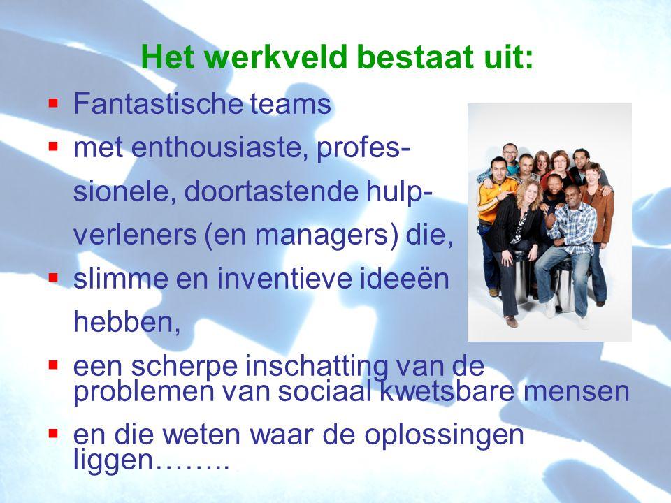 Het werkveld bestaat uit:  Fantastische teams  met enthousiaste, profes- sionele, doortastende hulp- verleners (en managers) die,  slimme en invent