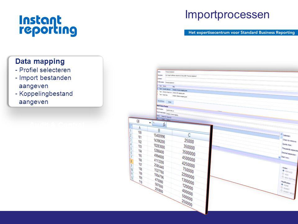 2011 Instant reporting | pagina 1 van x Audit & Control Importprocessen