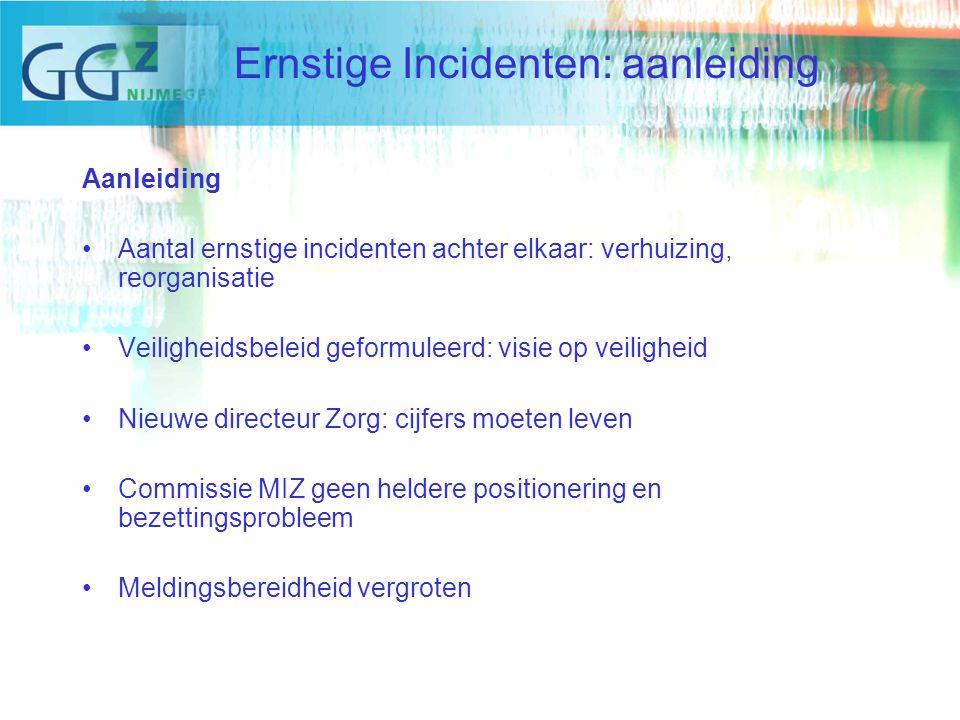 Categoriën Incidenten 2008 (totaal aantal gemelde incidenten 1112) Ernstige Incidenten: cijfers