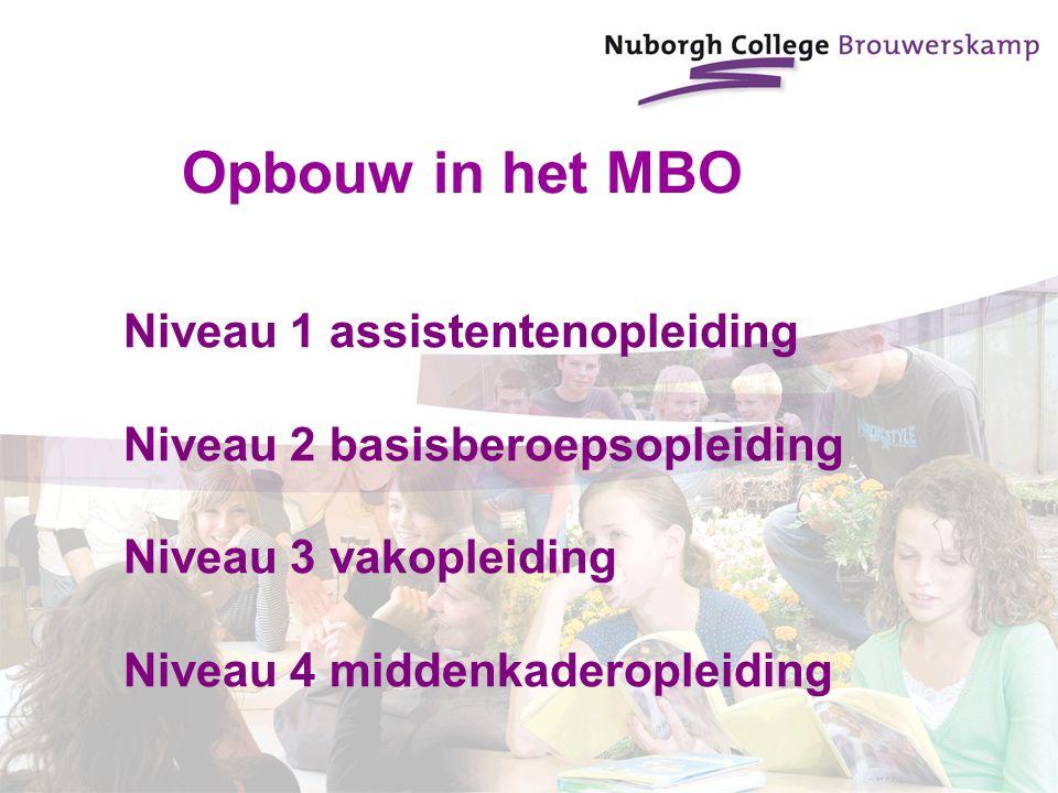 Niveau 1 assistentenopleiding Niveau 2 basisberoepsopleiding Niveau 3 vakopleiding Niveau 4 middenkaderopleiding Opbouw in het MBO