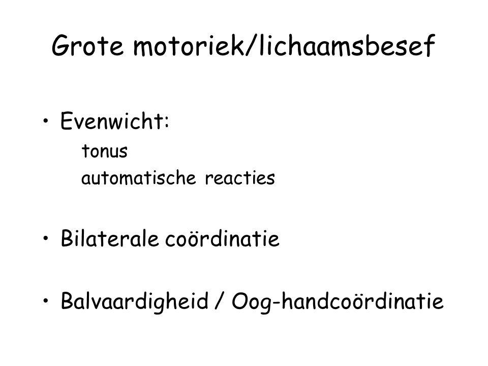 Grote motoriek/lichaamsbesef Evenwicht: tonus automatische reacties Bilaterale coördinatie Balvaardigheid / Oog-handcoördinatie