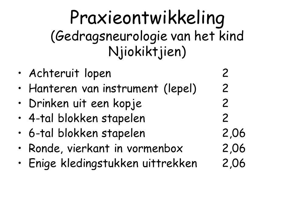 Praxieontwikkeling (Gedragsneurologie van het kind Njiokiktjien) Achteruit lopen2 Hanteren van instrument (lepel)2 Drinken uit een kopje2 4-tal blokke