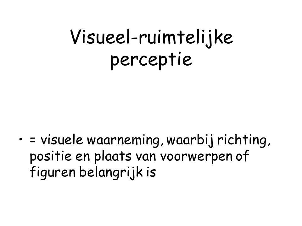 Visueel-ruimtelijke perceptie = visuele waarneming, waarbij richting, positie en plaats van voorwerpen of figuren belangrijk is
