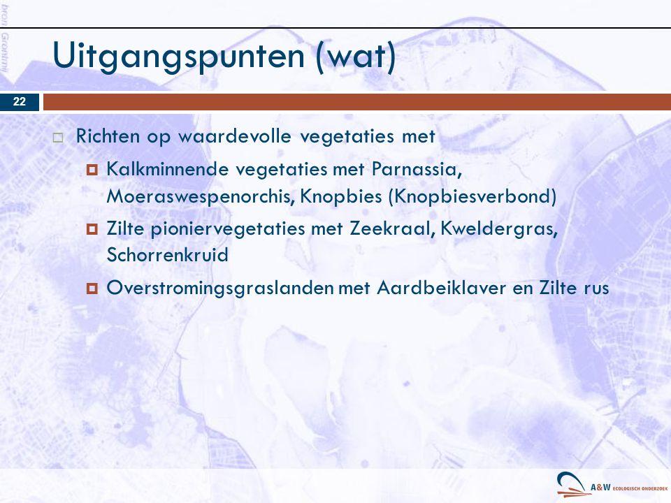 Uitgangspunten (wat)  Richten op waardevolle vegetaties met  Kalkminnende vegetaties met Parnassia, Moeraswespenorchis, Knopbies (Knopbiesverbond) 