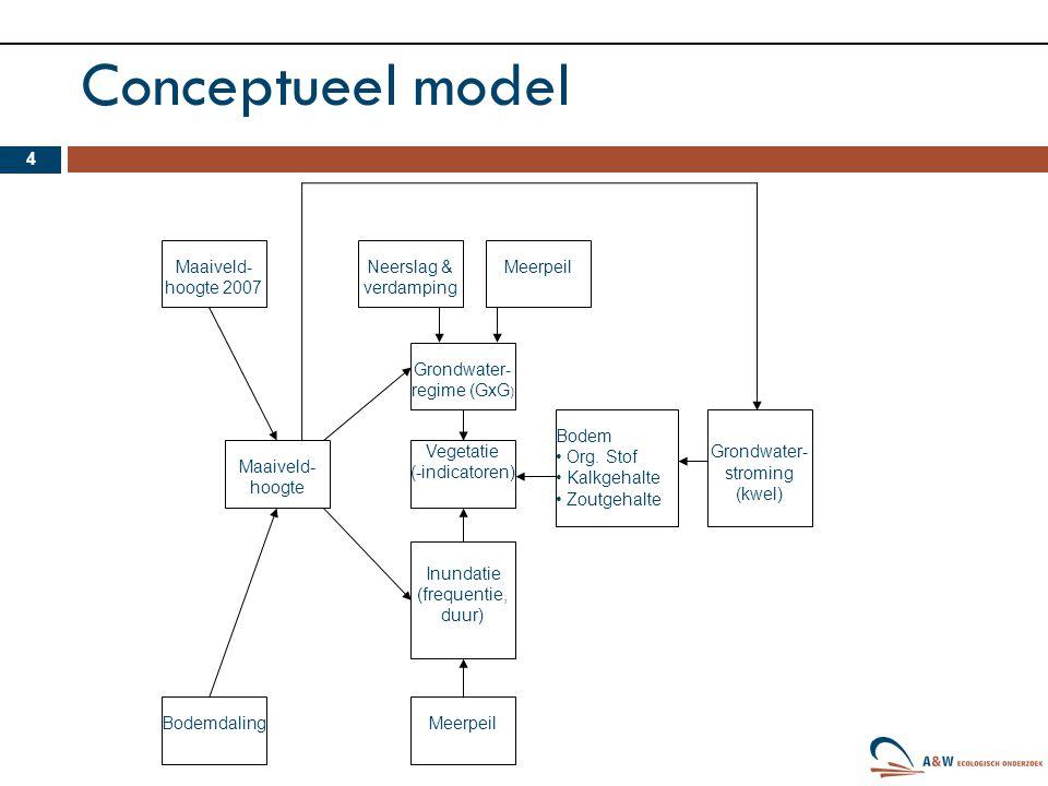 Conceptueel model 4 Vegetatie (-indicatoren) Grondwater- regime (GxG ) Bodem Org. Stof Kalkgehalte Zoutgehalte Grondwater- stroming (kwel) Inundatie (