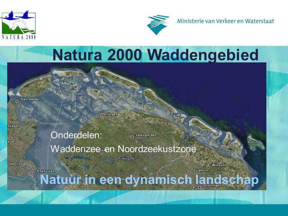 6 december 2007 Onderdelen: Waddenzee en Noordzeekustzone Natura 2000 Waddengebied Natuur in een dynamisch landschap