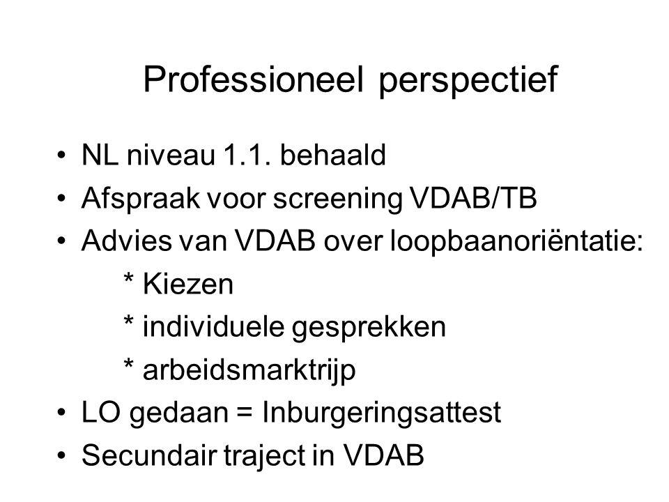 Professioneel perspectief NL niveau 1.1.