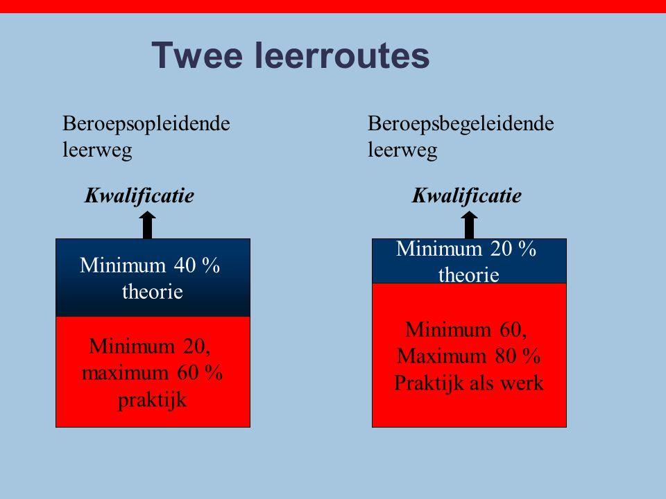 Qualification Minimum 60, Maximum 80 % Praktijk als werk Qualification Minimum 20, maximum 60 % praktijk Minimum 40 % theorie Twee leerroutes Beroepso