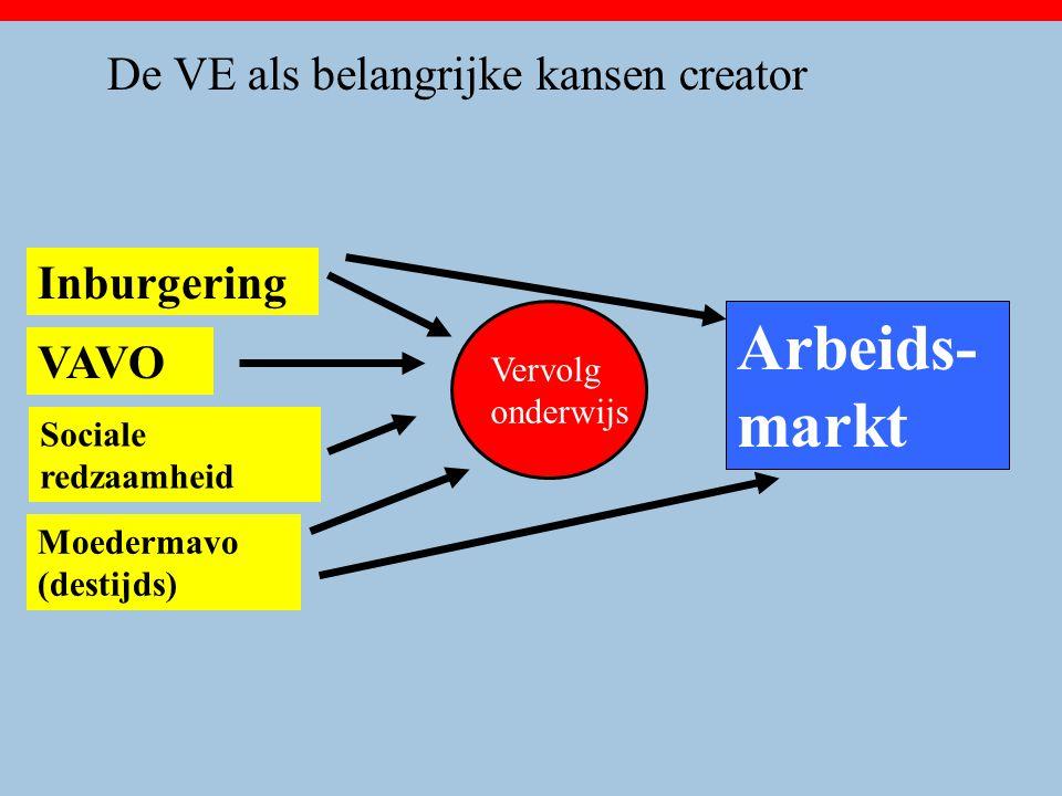 Inburgering Arbeids- markt Moedermavo (destijds) VAVO Sociale redzaamheid Vervolg onderwijs De VE als belangrijke kansen creator