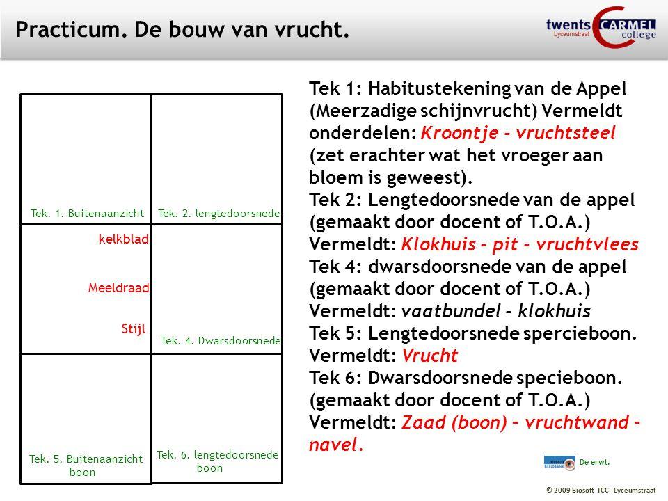 © 2009 Biosoft TCC - Lyceumstraat Practicum. De bouw van vrucht. Tek 1: Habitustekening van de Appel (Meerzadige schijnvrucht) Vermeldt onderdelen: Kr