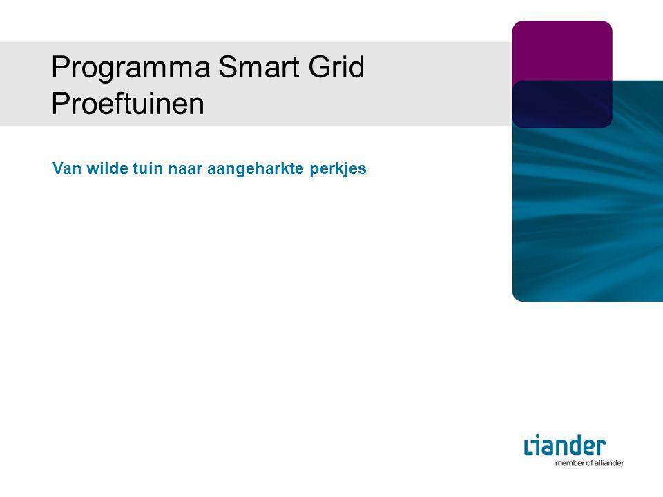 Van wilde tuin naar aangeharkte perkjes Programma Smart Grid Proeftuinen