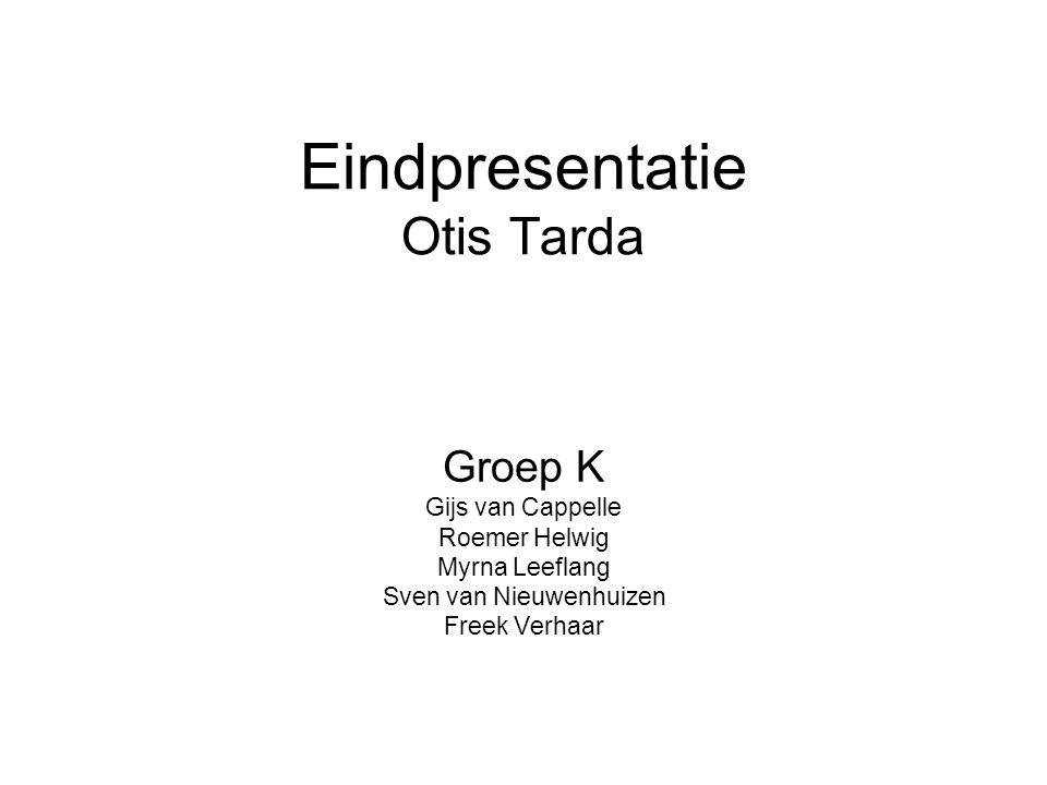 Eindpresentatie Otis Tarda Groep K Gijs van Cappelle Roemer Helwig Myrna Leeflang Sven van Nieuwenhuizen Freek Verhaar