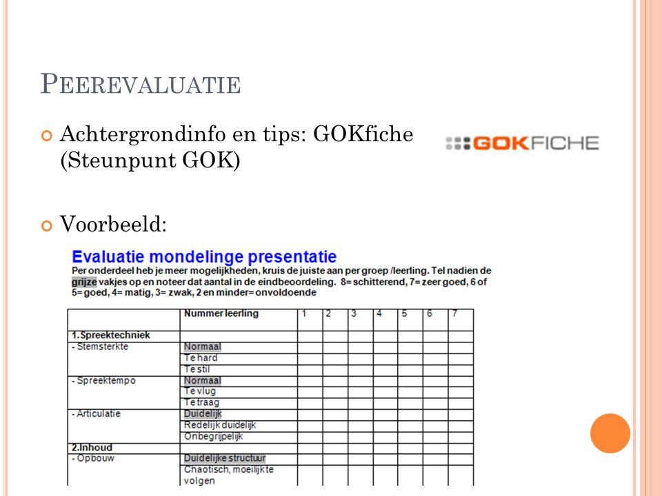 P EEREVALUATIE Achtergrondinfo en tips: GOKfiche (Steunpunt GOK) Voorbeeld: