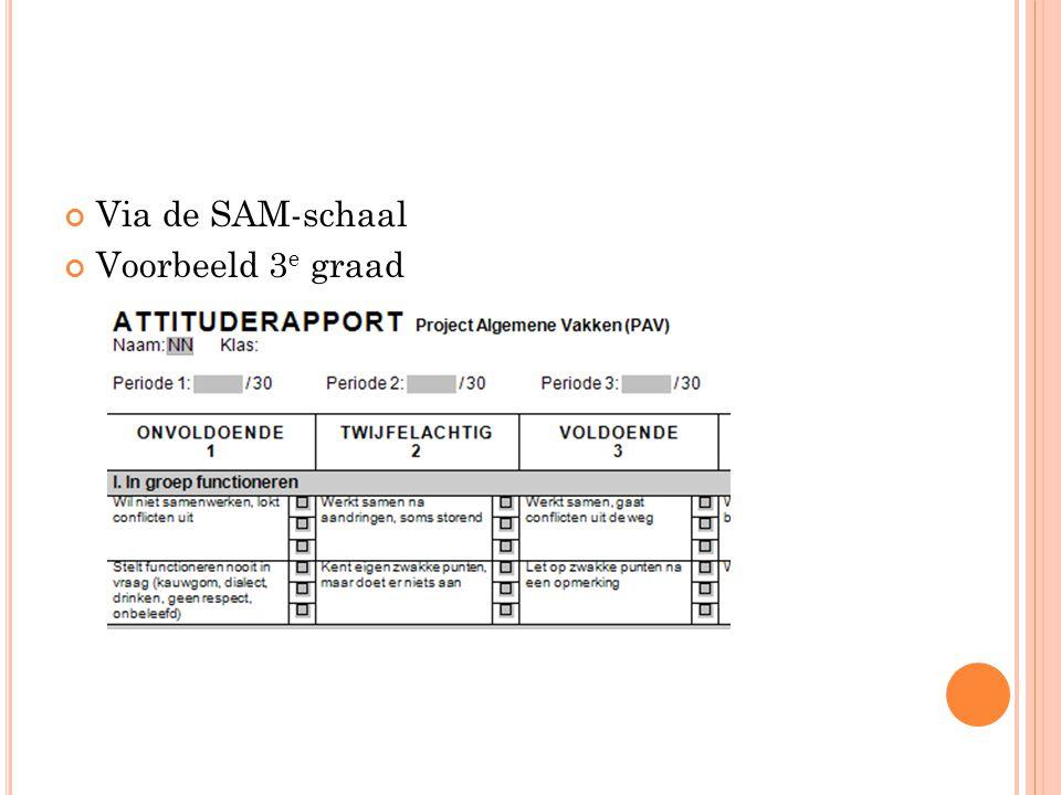 Via de SAM-schaal Voorbeeld 3 e graad