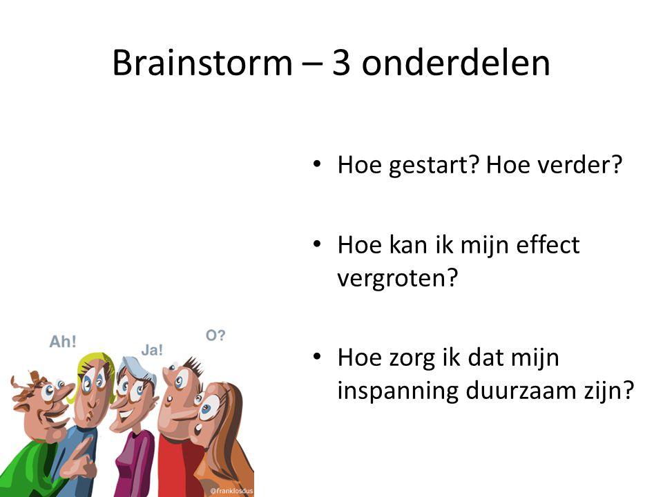 Brainstorm – 3 onderdelen Hoe gestart? Hoe verder? Hoe kan ik mijn effect vergroten? Hoe zorg ik dat mijn inspanning duurzaam zijn?