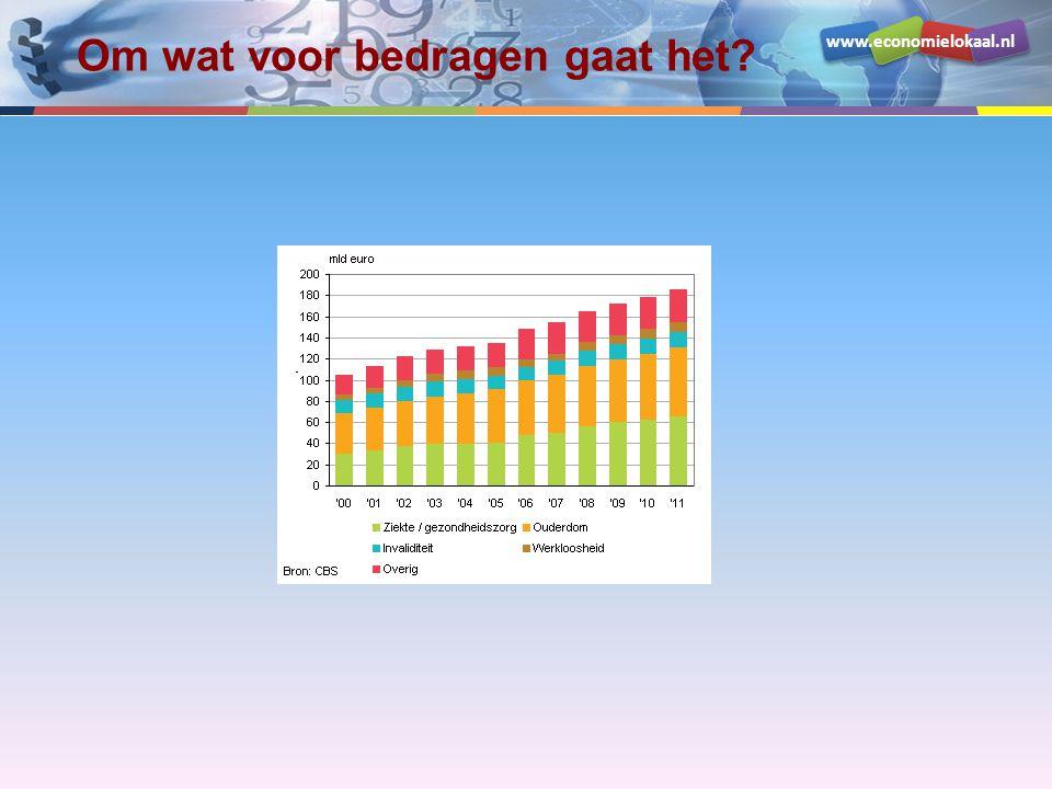 www.economielokaal.nl Om wat voor bedragen gaat het?