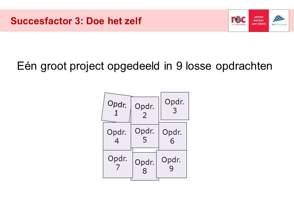 Succesfactor 3: Doe het zelf Opdr.1 Opdr. 8 Opdr.