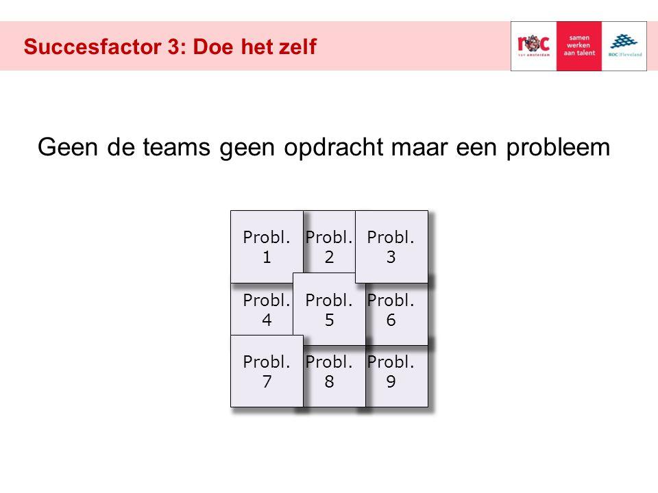 Probl. 2 Succesfactor 3: Doe het zelf Probl. 9 Probl. 4 Geen de teams geen opdracht maar een probleem Probl. 6 Probl. 8 Probl. 1 Probl. 5 Probl. 3 Pro