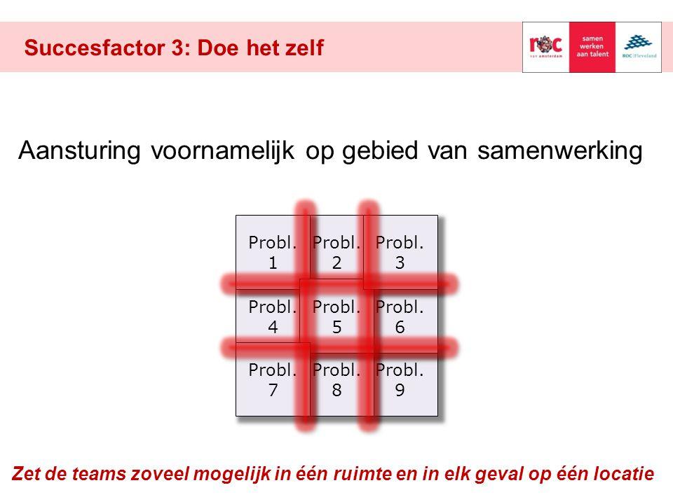 Probl. 2 Succesfactor 3: Doe het zelf Probl. 9 Probl. 4 Aansturing voornamelijk op gebied van samenwerking Probl. 6 Probl. 8 Probl. 1 Probl. 5 Probl.