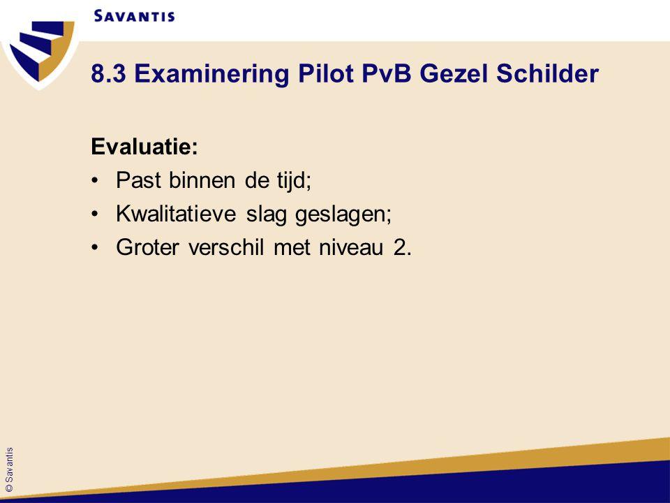 © Savantis 8.3 Examinering Pilot PvB Gezel Schilder Evaluatie: Past binnen de tijd; Kwalitatieve slag geslagen; Groter verschil met niveau 2.