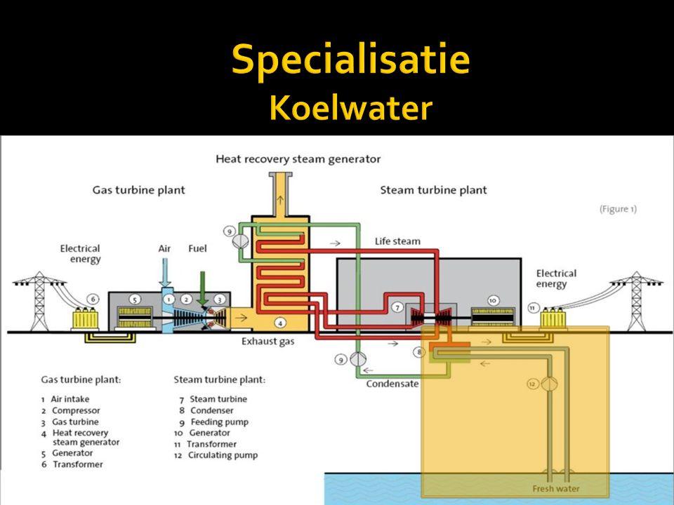 - Koelen condensor: stoom wordt water (condensaat) - Koelen van systemen: -pompen (centrifugaal) -smeerolie (turbines) -motoren