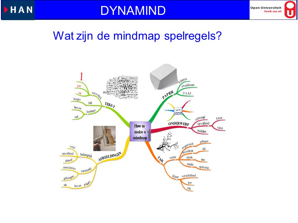 DYNAMIND Wat zijn de mindmap spelregels?