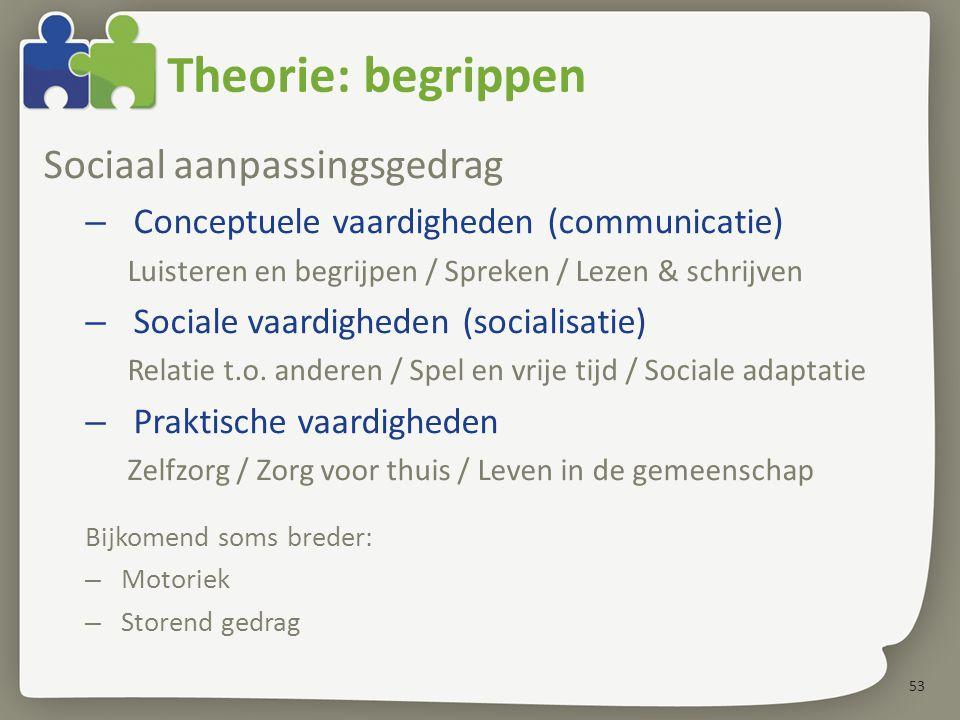 53 Theorie: begrippen Sociaal aanpassingsgedrag – Conceptuele vaardigheden (communicatie) Luisteren en begrijpen / Spreken / Lezen & schrijven – Socia