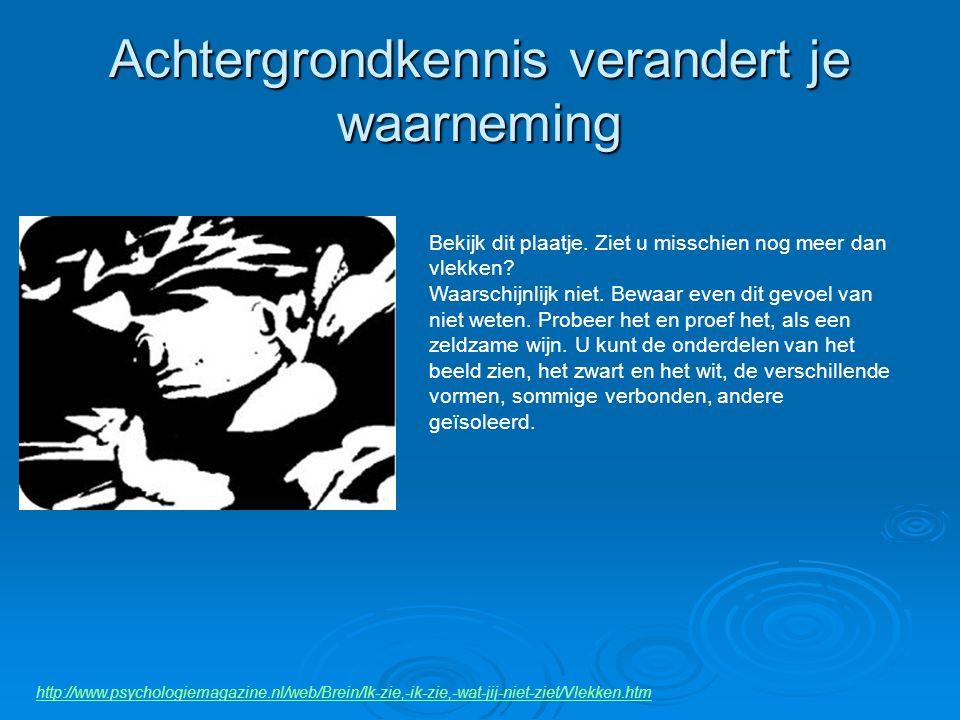 Achtergrondkennis verandert je waarneming http://www.psychologiemagazine.nl/web/Brein/Ik-zie,-ik-zie,-wat-jij-niet-ziet/Vlekken.htm Bekijk dit plaatje