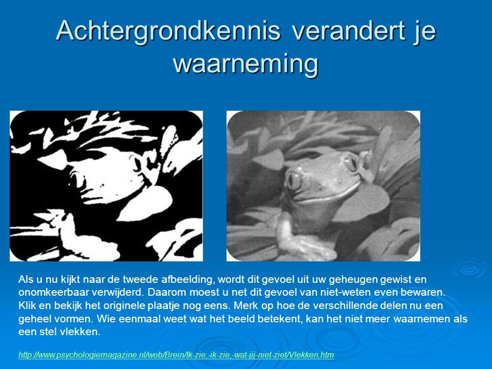 Achtergrondkennis verandert je waarneming http://www.psychologiemagazine.nl/web/Brein/Ik-zie,-ik-zie,-wat-jij-niet-ziet/Vlekken.htm Als u nu kijkt naa