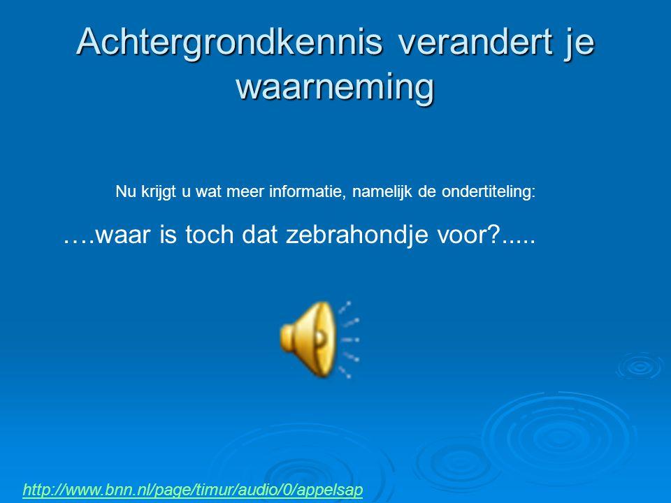 http://www.bnn.nl/page/timur/audio/0/appelsap Nu krijgt u wat meer informatie, namelijk de ondertiteling: ….waar is toch dat zebrahondje voor?..... Ac
