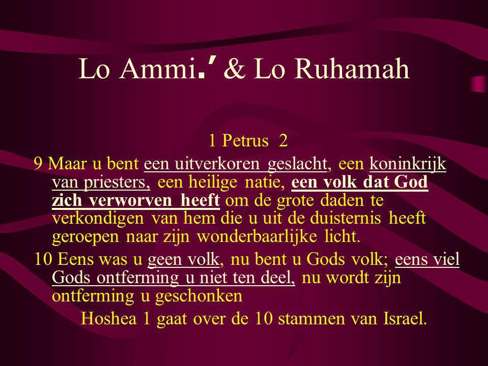 Lo Ammi.' & Lo Ruhamah 1 Petrus 2 9 Maar u bent een uitverkoren geslacht, een koninkrijk van priesters, een heilige natie, een volk dat God zich verwo