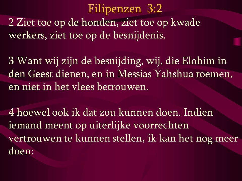 Filipenzen 3:2 2 Ziet toe op de honden, ziet toe op kwade werkers, ziet toe op de besnijdenis. 3 Want wij zijn de besnijding, wij, die Elohim in den G