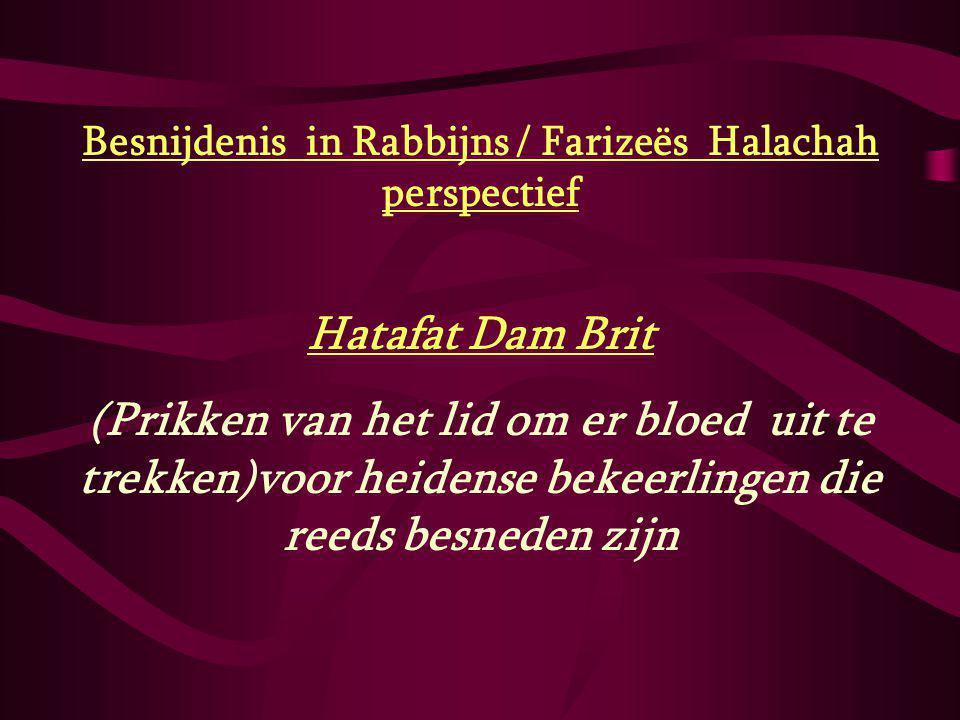 Besnijdenis in Rabbijns / Farizeës Halachah perspectief Hatafat Dam Brit (Prikken van het lid om er bloed uit te trekken)voor heidense bekeerlingen di