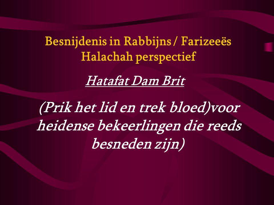 Besnijdenis in Rabbijns / Farizeeës Halachah perspectief Hatafat Dam Brit (Prik het lid en trek bloed)voor heidense bekeerlingen die reeds besneden zi