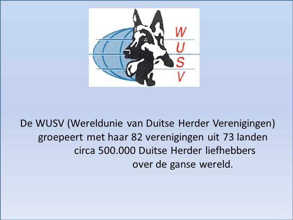 De WUSV (Wereldunie van Duitse Herder Verenigingen) groepeert met haar 82 verenigingen uit 73 landen circa 500.000 Duitse Herder liefhebbers over de g