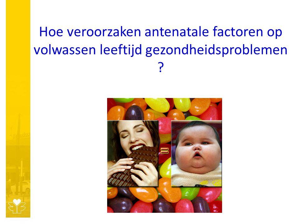 Hoe veroorzaken antenatale factoren op volwassen leeftijd gezondheidsproblemen ?