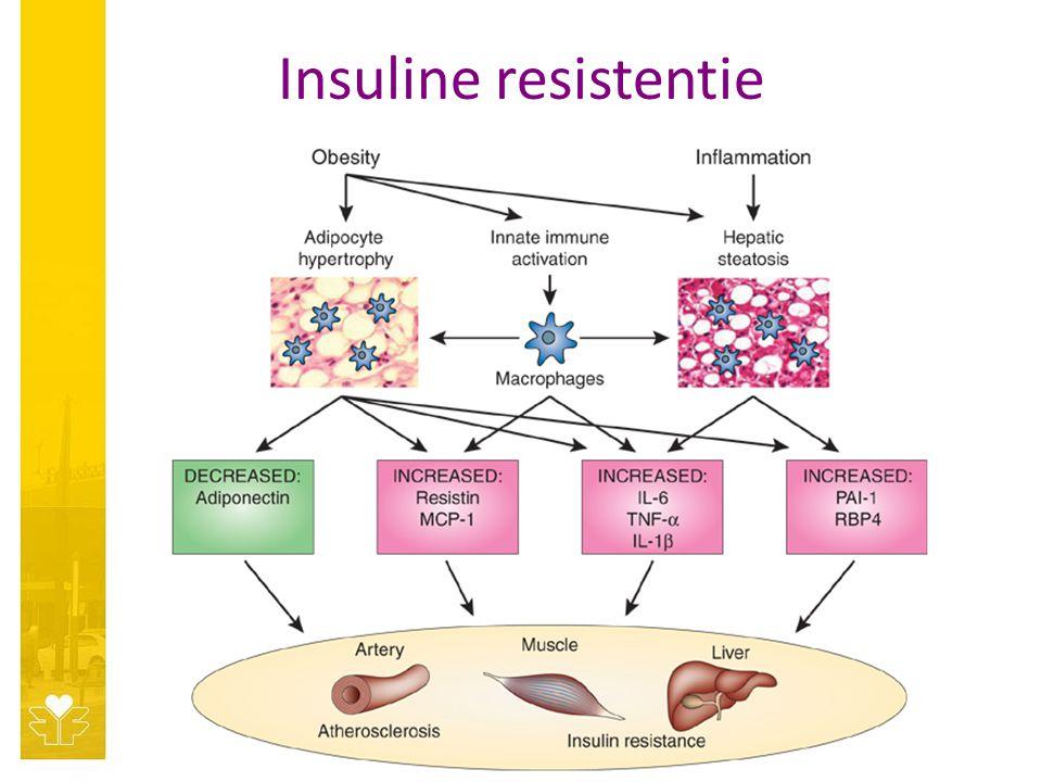 Insuline resistentie