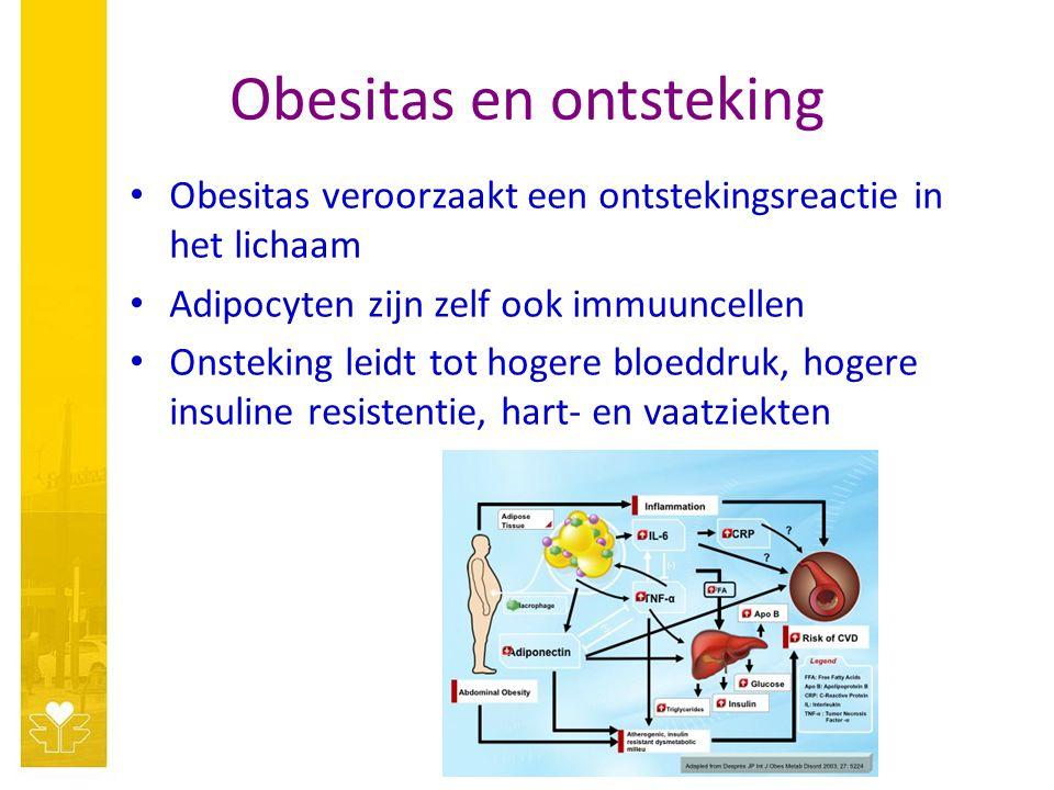 Obesitas en ontsteking Obesitas veroorzaakt een ontstekingsreactie in het lichaam Adipocyten zijn zelf ook immuuncellen Onsteking leidt tot hogere blo