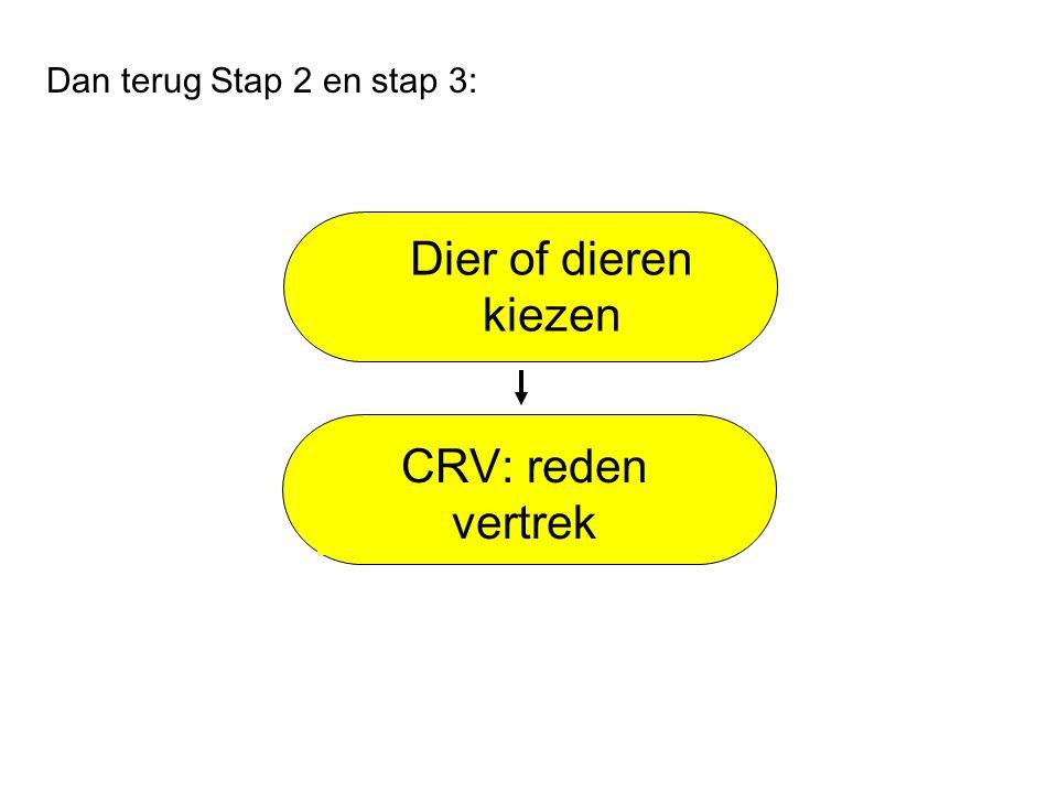 Dier of dieren kiezen CRV: reden vertrek Dan terug Stap 2 en stap 3:
