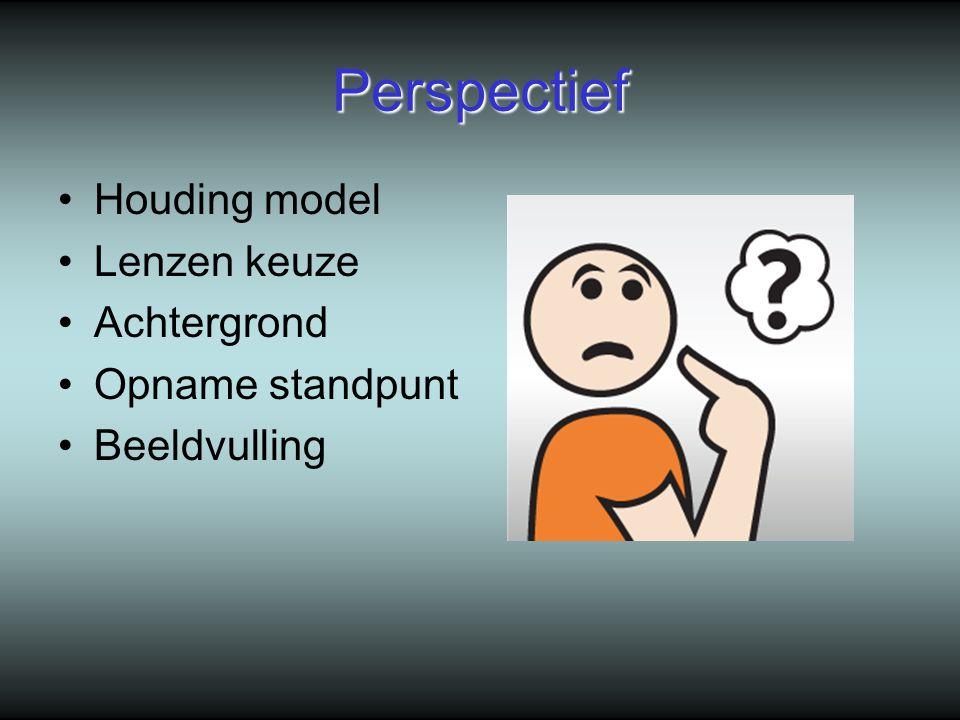 Perspectief Houding model Lenzen keuze Achtergrond Opname standpunt Beeldvulling