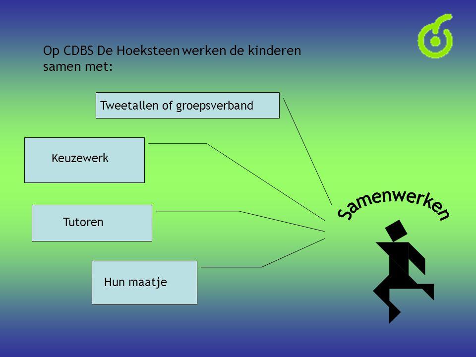 Op CDBS De Hoeksteen werken de kinderen samen met: Hun maatje Tutoren Keuzewerk Tweetallen of groepsverband