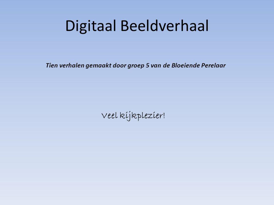 Digitaal Beeldverhaal Tien verhalen gemaakt door groep 5 van de Bloeiende Perelaar Veel kijkplezier!