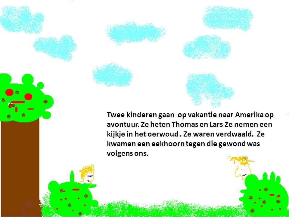 Twee kinderen gaan op vakantie naar Amerika op avontuur. Ze heten Thomas en Lars Ze nemen een kijkje in het oerwoud. Ze waren verdwaald. Ze kwamen een