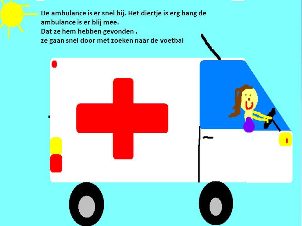 De ambulance is er snel bij. Het diertje is erg bang de ambulance is er blij mee. Dat ze hem hebben gevonden. ze gaan snel door met zoeken naar de voe