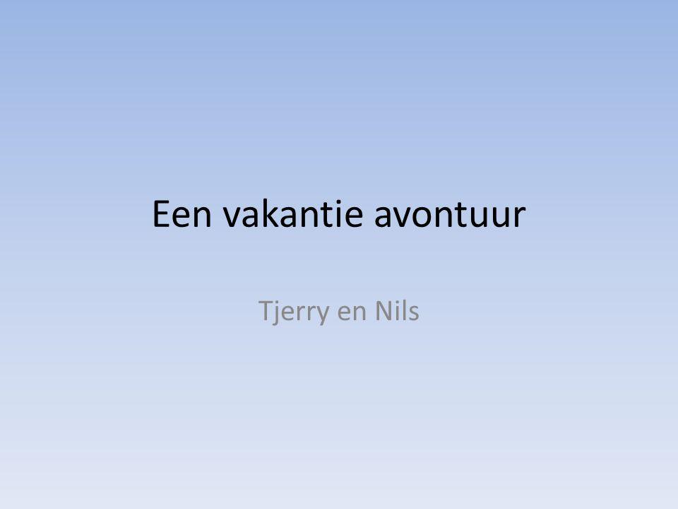 Een vakantie avontuur Tjerry en Nils